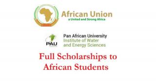 Pan African University Institute