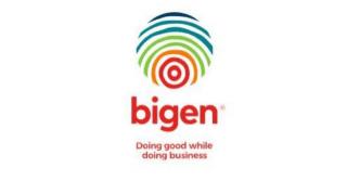 Bigen Africa Services logo