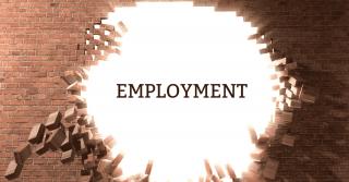 z83 form | Careers Portal