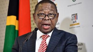 blade nzimande free education