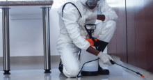 How to become a pest controller