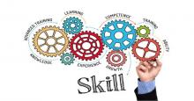 SDL Skills Levy