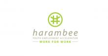 Harambee Youth